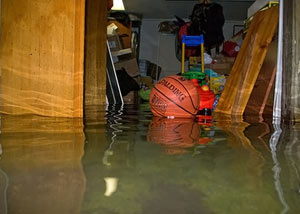A flooded basement bedroom in Red Hook
