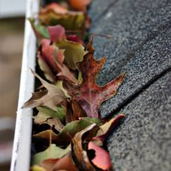 Clogged gutters filled with fall leaves  in Red Hook